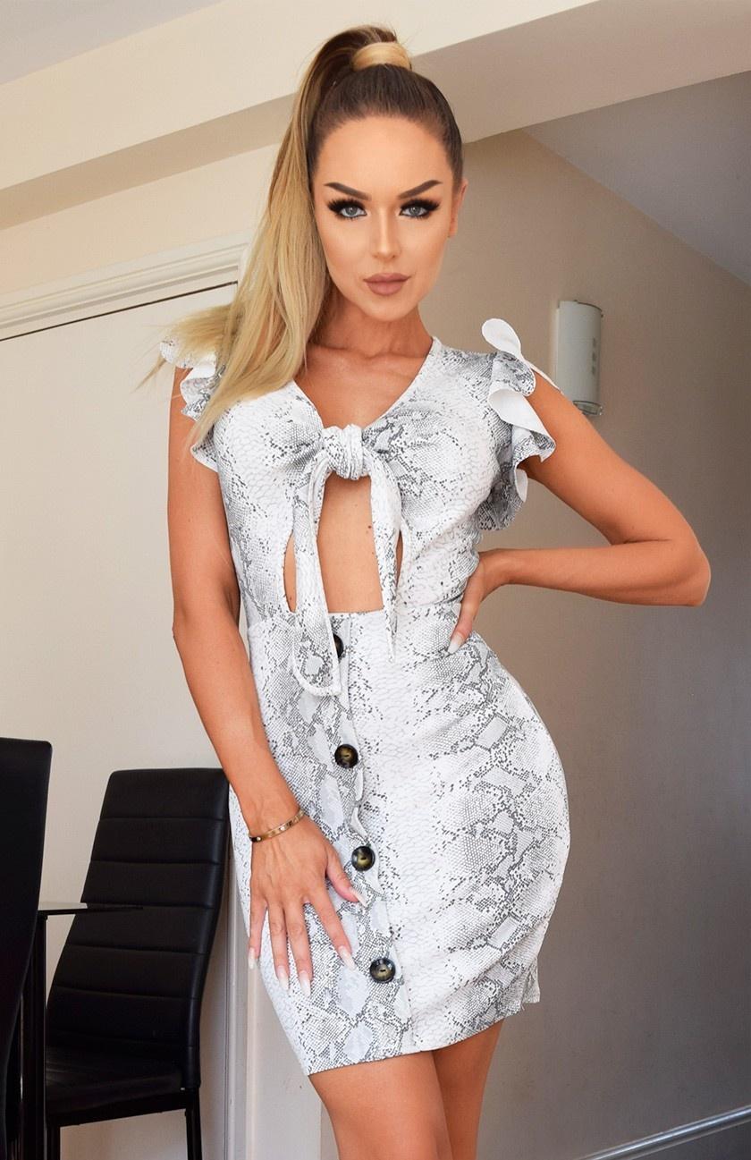 Dasia Snake Print Button Dress Grey