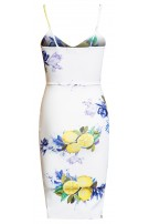 Orla Floral Bodycon Dress Ivory