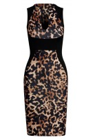 Shelby Panel Bodycon Dress Brown