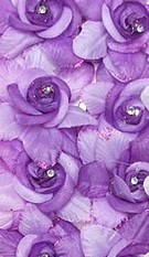 Roos-Haarspeld-Set Purple