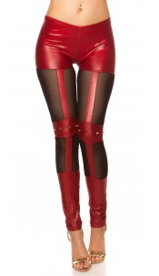 Sexy KouCla wetlook-leggings with studs Bordeaux
