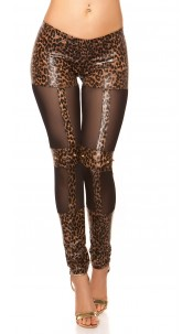 Sexy KouCla wetlook-leggings with studs Leo