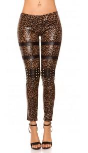 Sexy KouCla leatherlook-leggings with studs Leo